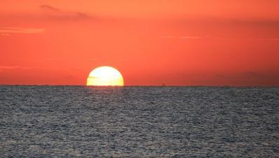 sunset paella